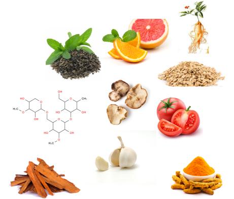 NutraVesta-Proven-Plus-ingredients