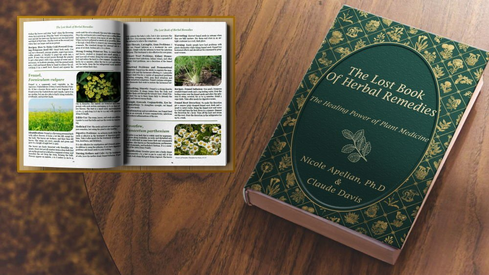 The-Lost-Book-of-Herbal-Remedies