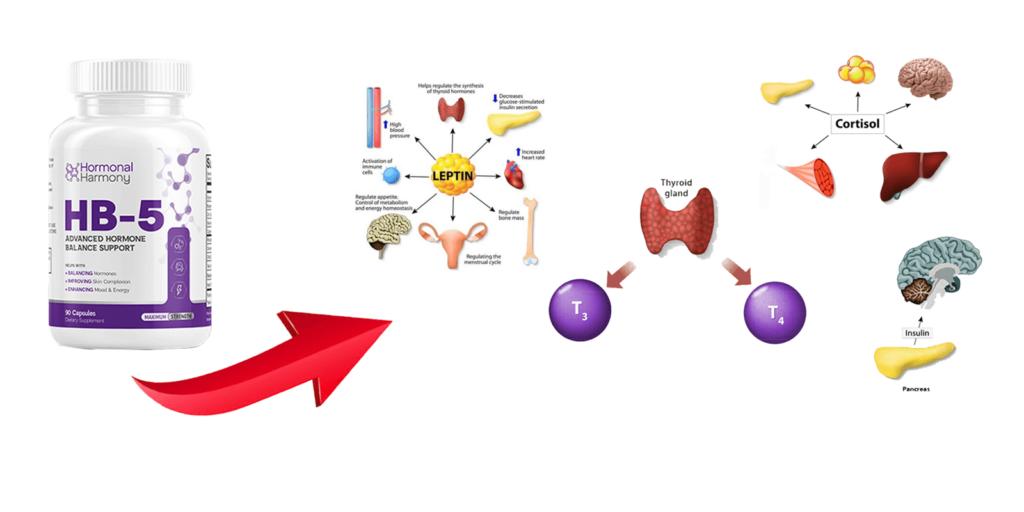 hormonal harmony hb-5 ingredients