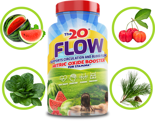 the 20 flow review