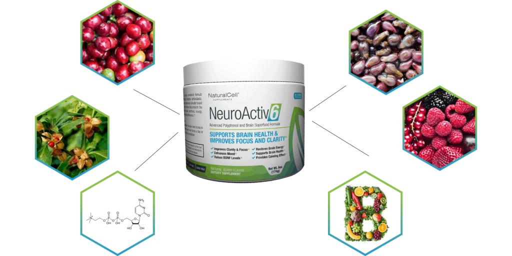 Neuroactiv6 ingredients